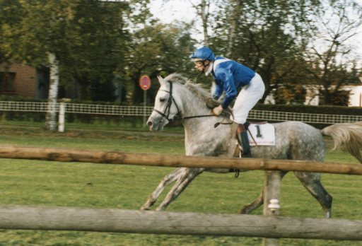 0017 El Thay Ibn Halim Shah (Racing)