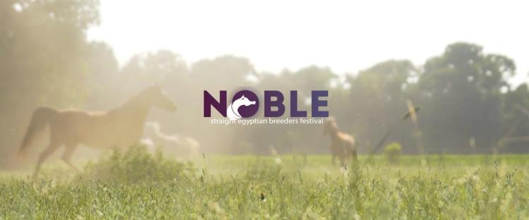 Noble_LP